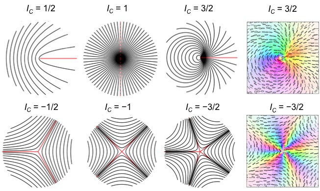 Exploring High-Order Disclinations in Polarization of Light Fields