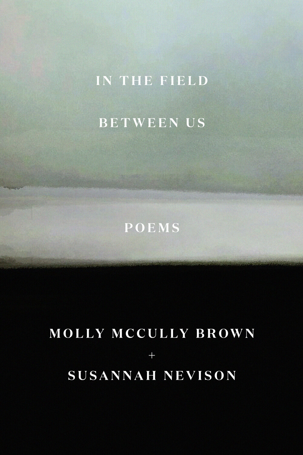 In the Field Between Us Book Cover