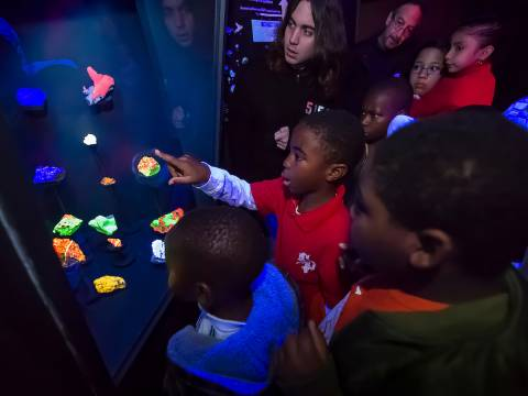 Fluorescent minerals light up visiting students faces at visualization lab
