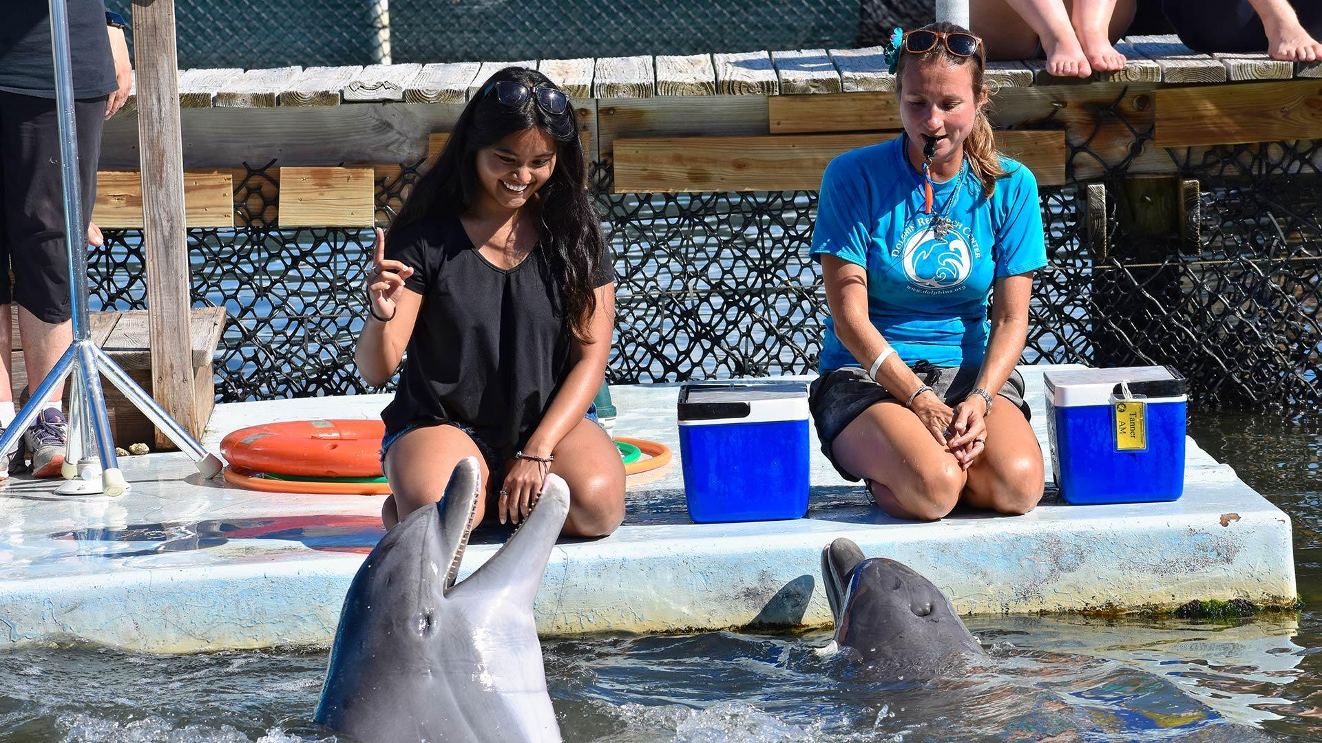 A student holds up a finger while kneeling near the water, where a dolphin responds.