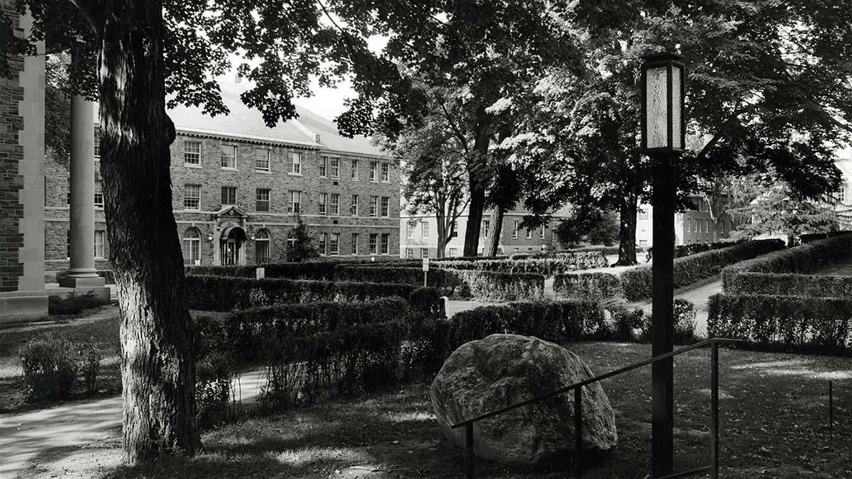 An archival photo of the Academic Quad showing fairly extensive tree cover