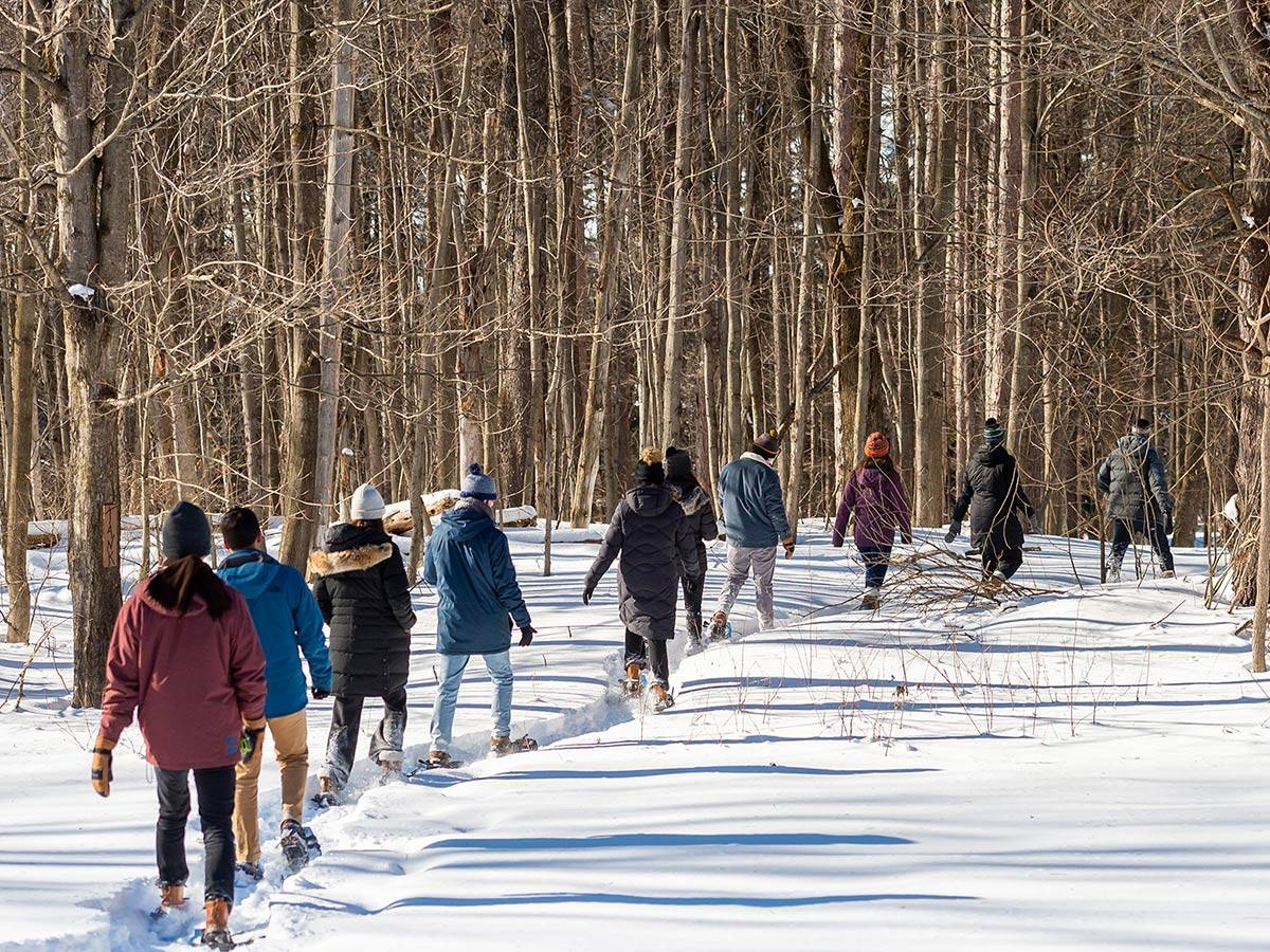 Students snowshoe on Colgate campus trails
