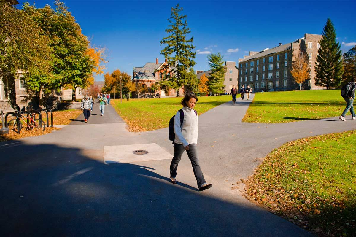 Students walk along the quad.