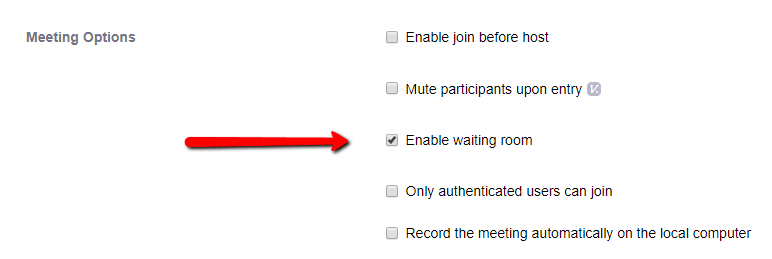 Screenshot showing the meeting options with Enable Waiting Room selected