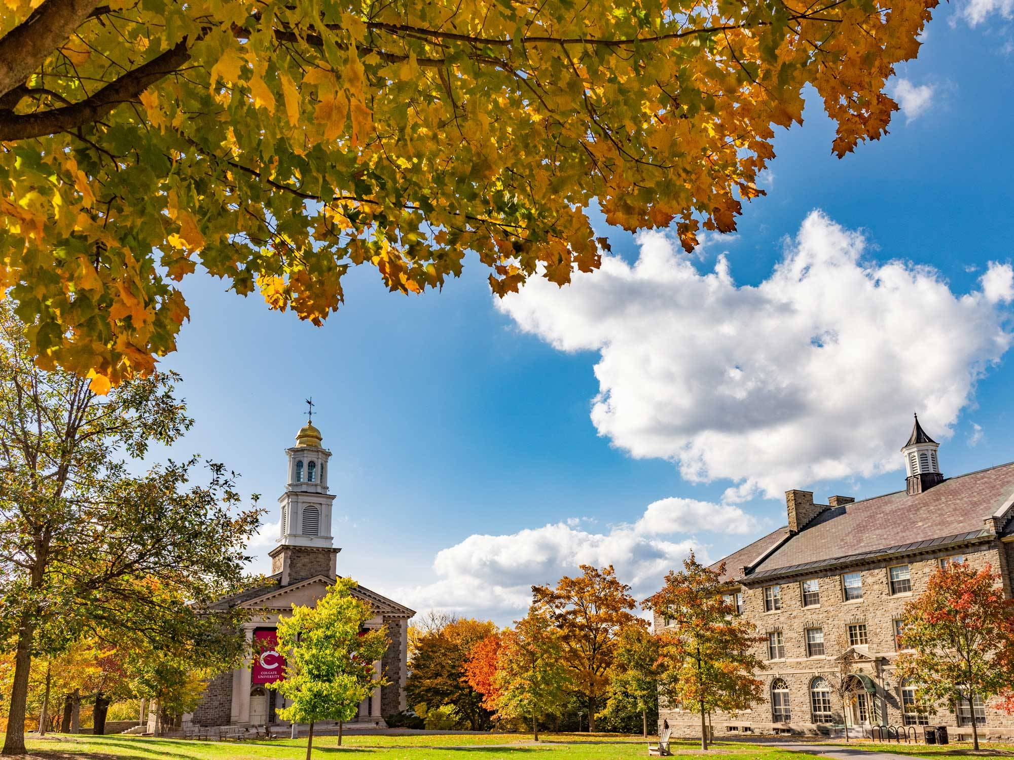 Autumn foliage on the academic quad
