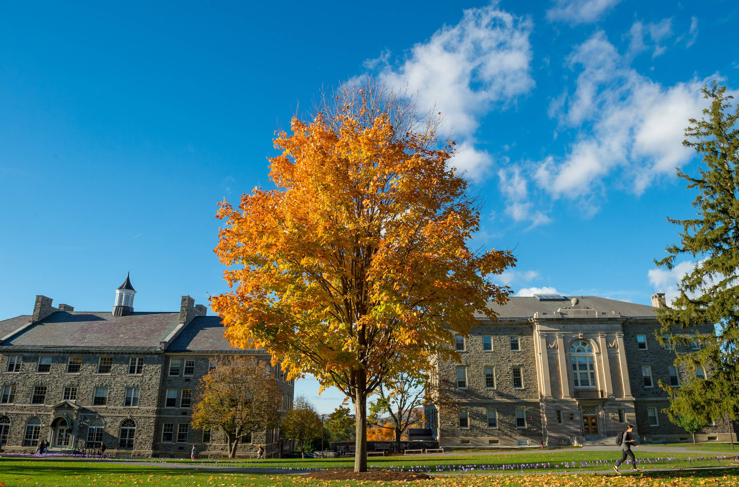 Fall on Colgate's campus