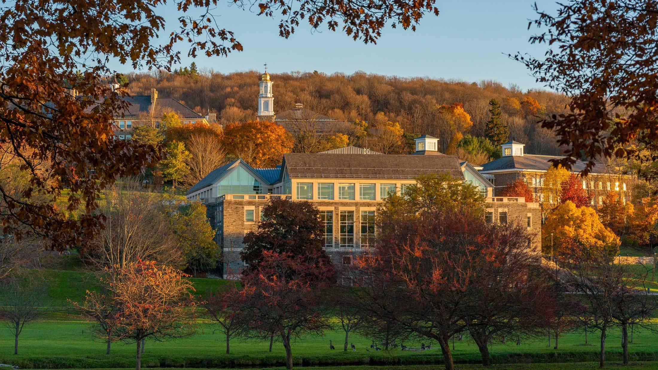 Colgate campus in the autumn